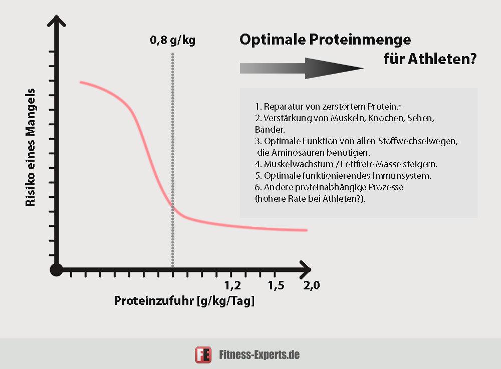 Optimale Proteinzufuhr Sportler/Athleten