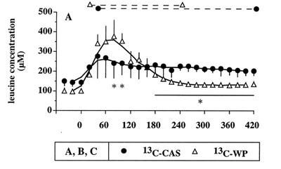 Blutspiegel von Leucin im Vergleich zweischen Kasein (volle Kreise) und Whey (weiße Dreiecke). Bildquelle: Boirie Y et al. 1997