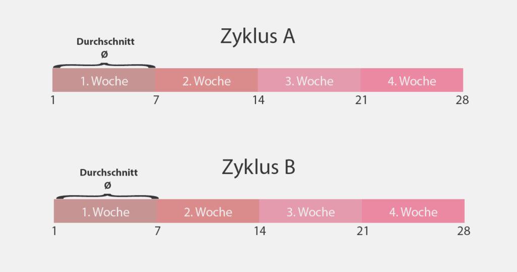 zyklus_wiegen_schnitt_kg
